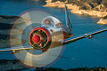 Bear 360: Living The Warbird Dream!